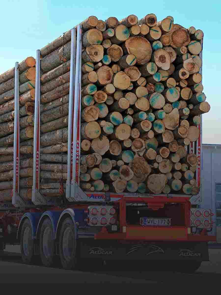 http://www.tonymrees.co.uk/wp-content/uploads/2017/08/cell_trucks_02.jpg