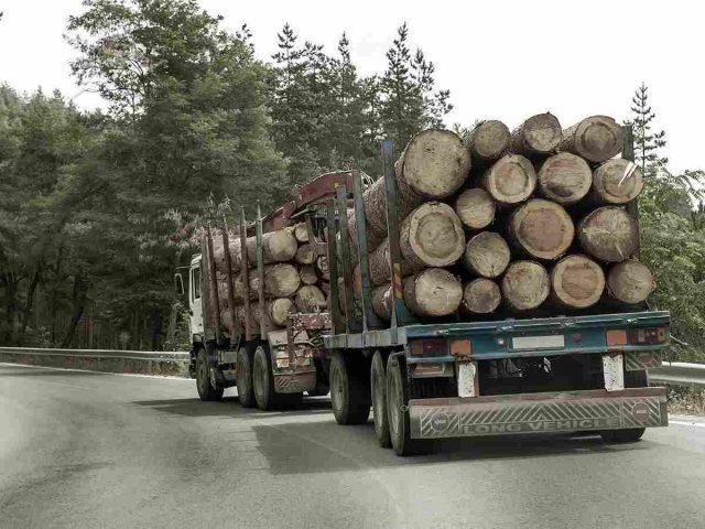 http://www.tonymrees.co.uk/wp-content/uploads/2017/08/inner_big_trucks_01-640x480.jpg